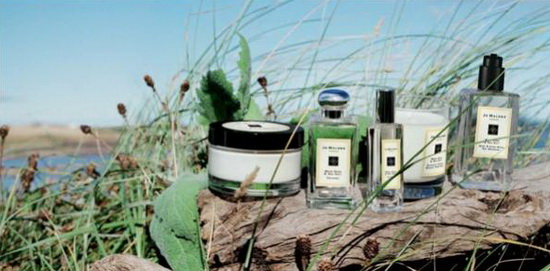 Jo-Malone-2014-Wood-Sage-and-Sea-Salt 4