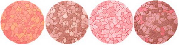 Kiko-Spring-2015-Generation-Next-Collection-Mosaic-Blush 2