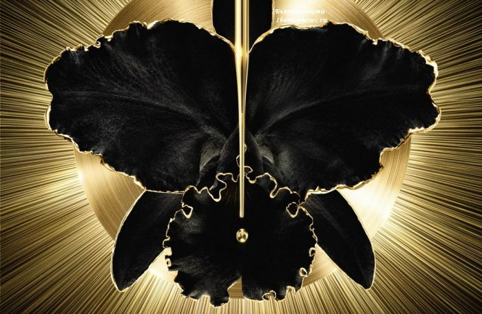 Guerlain Ochidee Imperiale Black Serum
